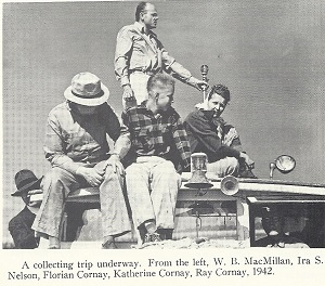 Collecting Louisiana Irises in the swamps of South Louisiana showing WB MacMillan, Ira S Nelson, Florian Cornay, Katherine Cornay and Ray Cornay, ca 1942